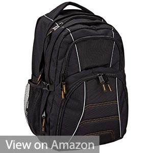 AmazonBasics Backpack for Laptops
