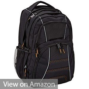 AmazonBasics Backpack for Laptops