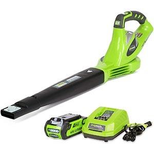 GreenWorks 24252 Cordless Leaf Blower