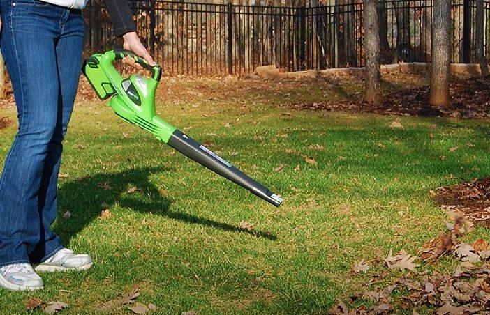 best-cordless-leaf-blower