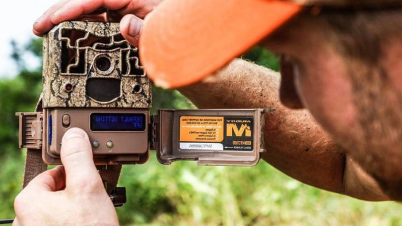 What To Look for In a Trail Camera