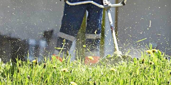 tips on cutting grass