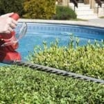 how to choose the Petrol Hedge Trimmer