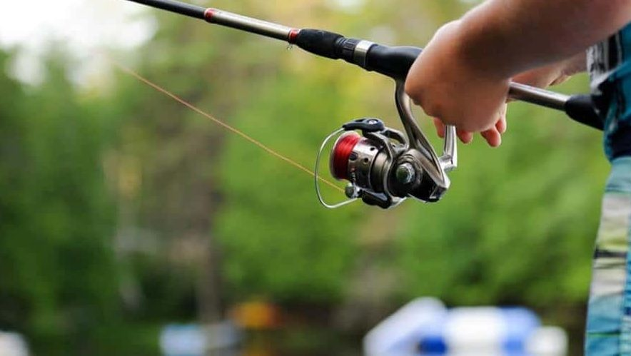 Best Fishing Line for Particular Types of Fish