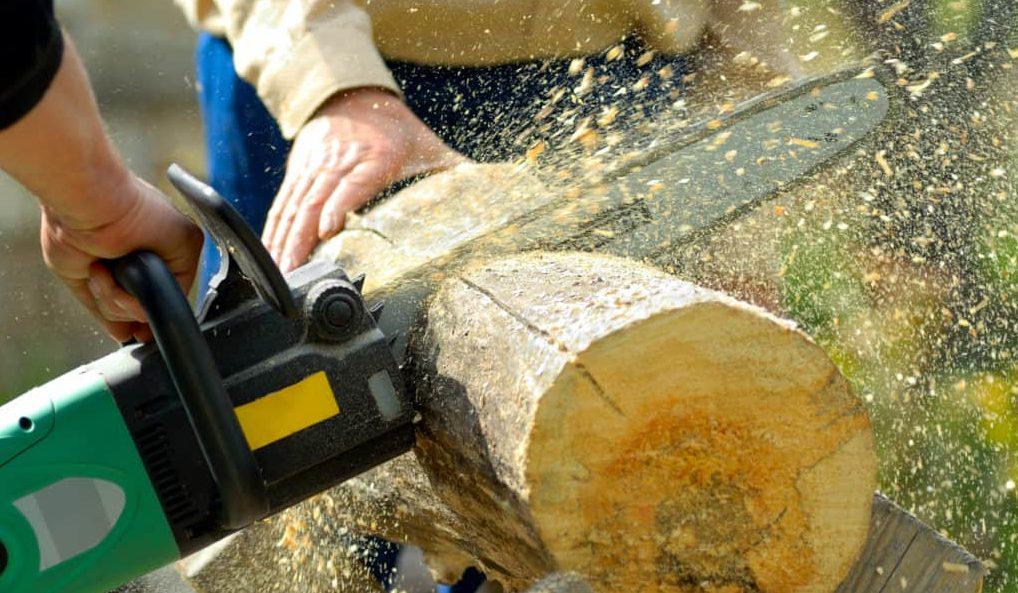 two lumberjacks at work, loggers