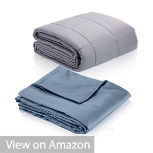 HomeSmart Products Weighted Blanket