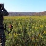 Optics for Elk Hunting
