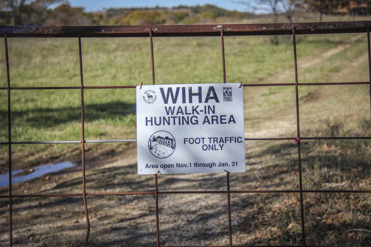 Should I Hunt Public Land?