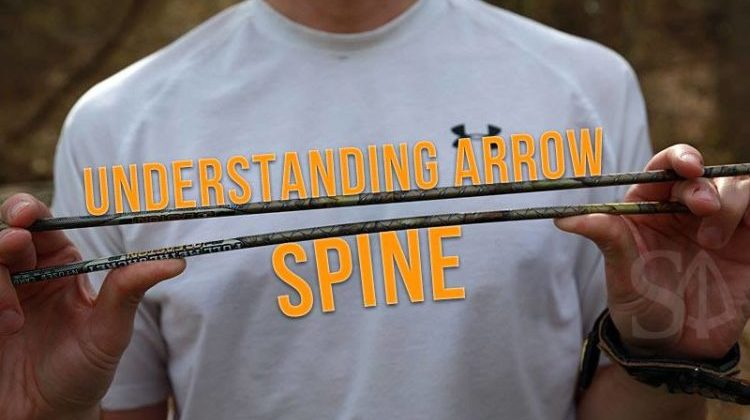 understanding arrow spine