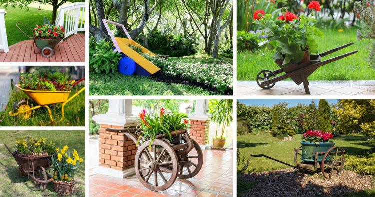 Perfect Garden Decoration