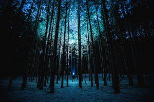 Best Flashlight For Hiking