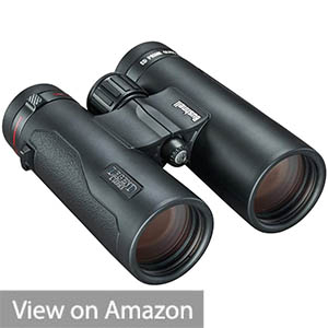 Bushnell Legend Ultra HD 10x 42mm Binocular